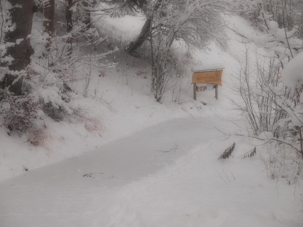 Auffahrt Winter
